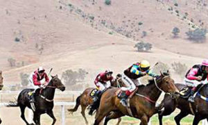 Endurance Riding Equestrian Sport Popular Worldwide